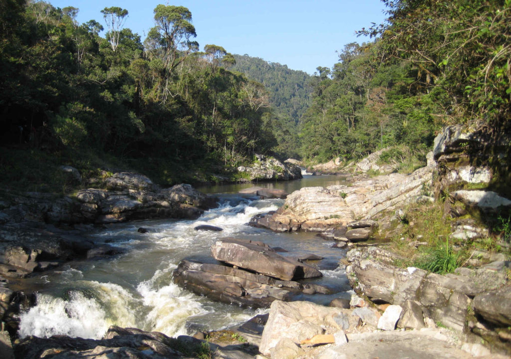 Le parc national de Ranomafana